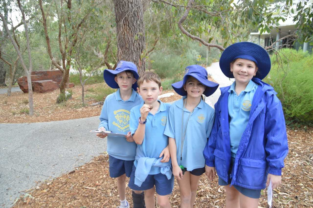 School News | Loreto Nedlands - Newsletter